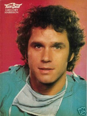 Gregory Harrison as Gonzo Gates