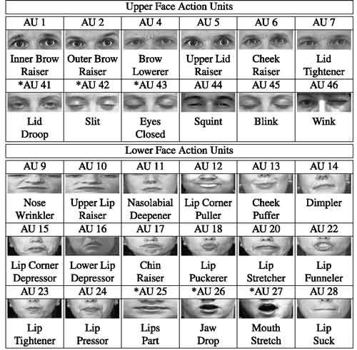 Image result for facial action coding system chart