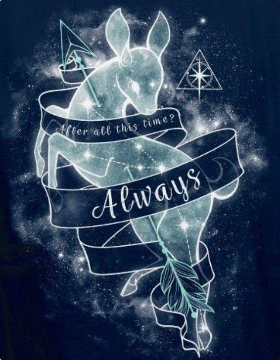 Irgendwelche Harry Potter Bilder In 2021 Harry Potter Artwork Harry Potter Background Harry Potter Wallpaper