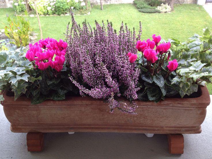 Vaso fiori autunnali