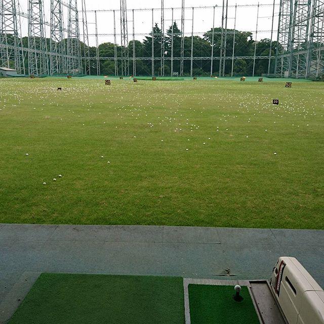 梨香台ゴルフガーデンにて100球だけ練習。 最近ドライバー打つ時ですらスタンスを狭めにしないと腰から先に回せなくなってきた。 次回のゴルフまで珍しく一ヶ月空くので、この時間を利用してスイング改造に踏み切る決意。 プロに習おうかしらん。 #松戸市 #高塚新田 #梨香台ゴルフガーデン #ゴルフ #ゴルフ練習 #腰が回らない #100球ほとんどドライバー #典型的な下手くそさんの練習 #ドライバーが上手くいけばスコアがまとまると信じてる #んなワケないのに #いや本当にアプローチなんか素晴らしいんですってば #自分で言うな #パターも入る時はスコスコ入るんだっ #みんな同じです #入らない時は洗面器の大きさだって入る気しない #アプローチ&パターが大事 #肉&米みたいなもん #牛&豚みたいなもん #いや鶏&豚が好きです #違う豚&米の方が #何の話でしたっけ #そうそう肉焼く時のタレなんですけど #違う #脱線すると戻れない #そんなヨボヨボなお年頃 #食報士 #プロリバウンダー