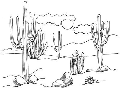 sketches to copy | Draw landscapes of cacti in a desert scene. In this article, you can ...
