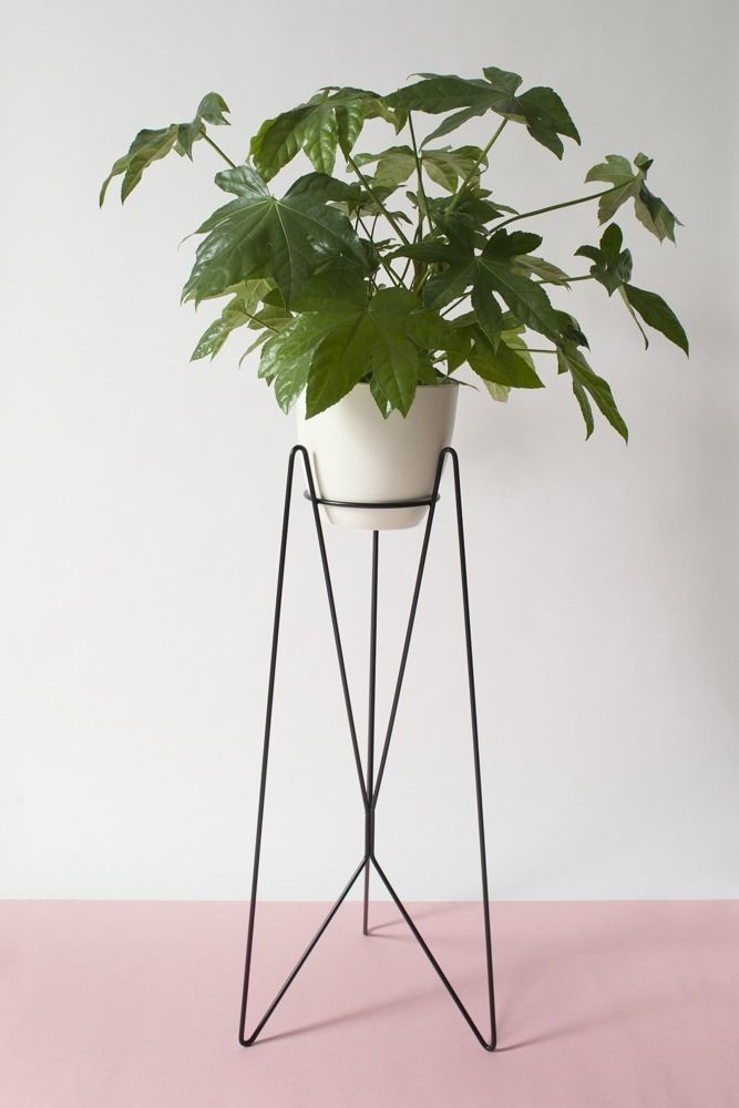 BATI plant stand | BLUM collection | BUJNIE | Beautiful and functional plant stands. #plants #plantstand #plantsarefriends #BLUM #bujnie #jungle #botanical #floral #design #product