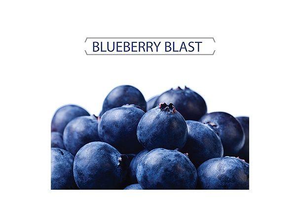 vz_eliquid_blueberry_blast