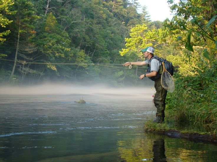65 best fishing for trout in the south images on pinterest for Fishing in gatlinburg tn