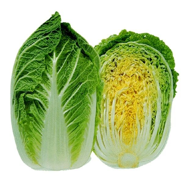 Heirloom Michihili Napa Chinese Cabbage Bulk 1 2 Ounce 5000 Seeds Asian Greens Cabbage Napa Cabbage Chinese Cabbage