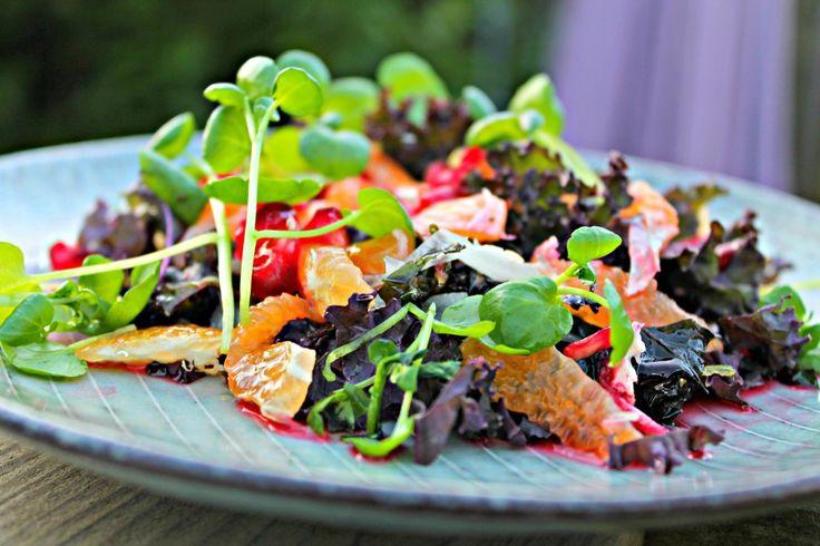 grønkålssalat med klementiner, salad with kale and clementiner