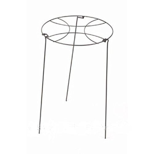 Smart Garden 40cm Gro-Ring Plant Support with 60cm Legs FOR SALE • £6.99 • See Photos! Money Back Guarantee. Smart Garden 40cm Gro-Ring Plant Support with 60cm Legs. Provides Support For Medium Stemmed Plants Heavy Duty Ideal For Patio Pots {ReturnsPolicy} 282358391082
