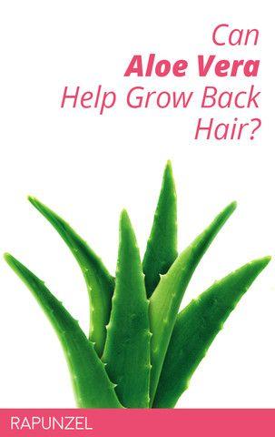 Can Aloe Vera Help Grow Back Hair Rapunzel Aloe Vera