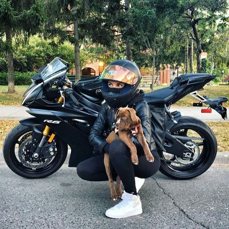 Motoqueras (Motorradjacken) | Twitter   – Motorrad