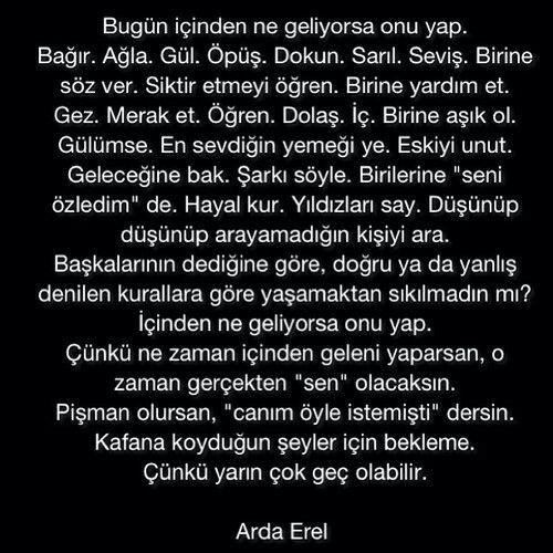 Arda Erel...