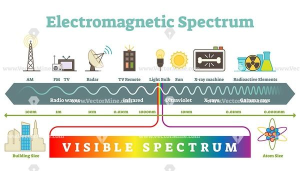 Electromagnetic Spectrum Infographic Diagram Vector Illustration In 2020 Electromagnetic Spectrum Radio Frequency Visible Light Spectrum