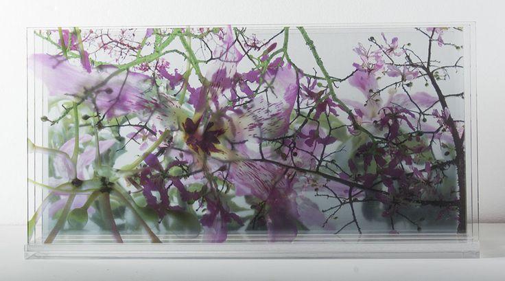 Caja 3d- fotografía multicapa- Laura Messing