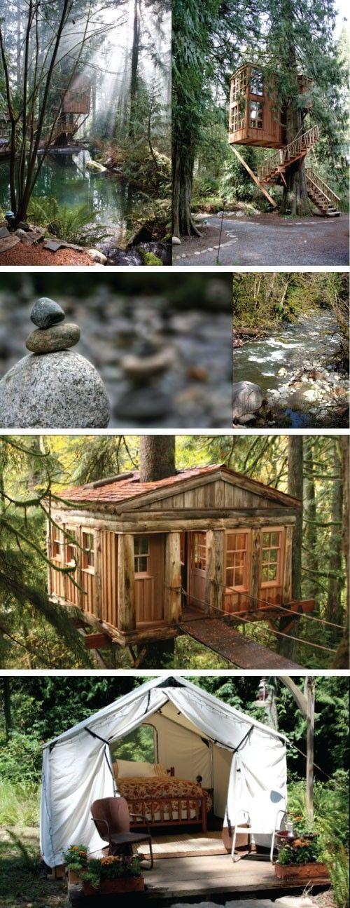 Insane Tree Houses 193 best tree houses images on pinterest | treehouses