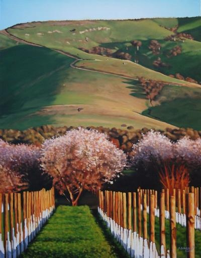Willunga Blossoms