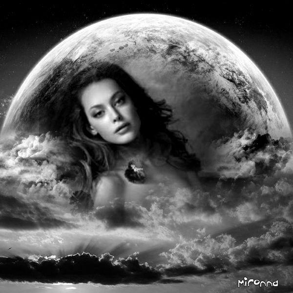 Black & White  Nature Fantasy