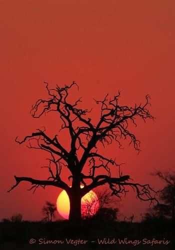 The sun sets on another spectacular safari in Kruger National Park