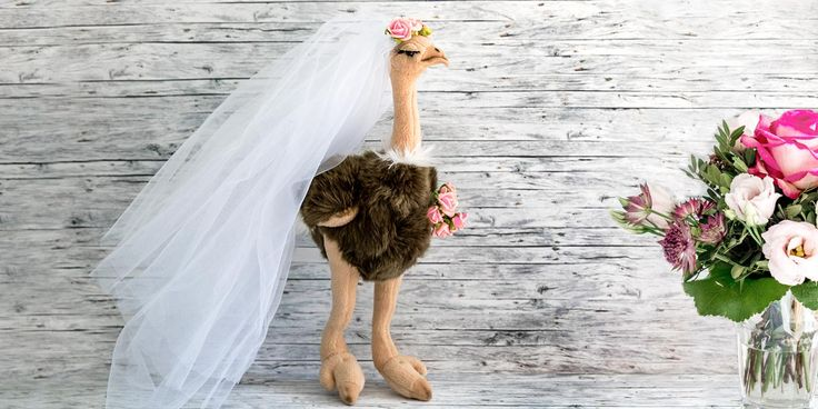 Ihr sucht nach einem lustigen Highlight für die Hochzeit? Statt dem Brautstrauß Wurf könnt ihr einfach einen witzigen DIY Wurfstrauß aus Plüsch werfen!