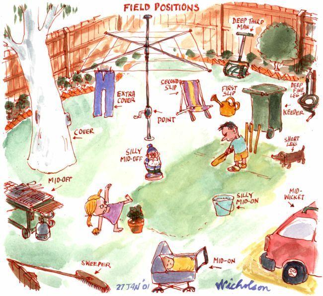 Positions in backyard cricket.