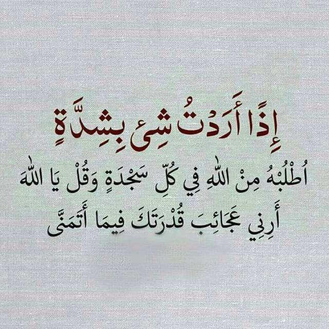 Heba Mohammed Hebammohammede1 تويتر Calligraphy Arabic Calligraphy Arabic