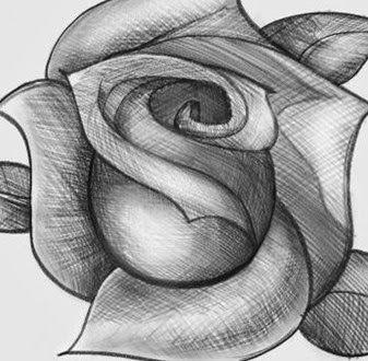 Cómo dibujar una rosa paso a paso ~ Mimundomanual