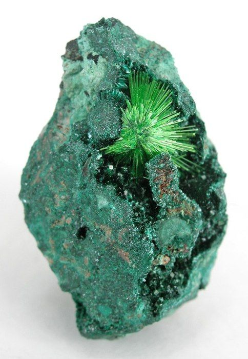 Cuprosklodowskite: Crystals, Emeralds Cities, Shops Window, Color, Green, Rocks Minerals Gems, Cuprosklodowskit, Natural, Cool Rocks
