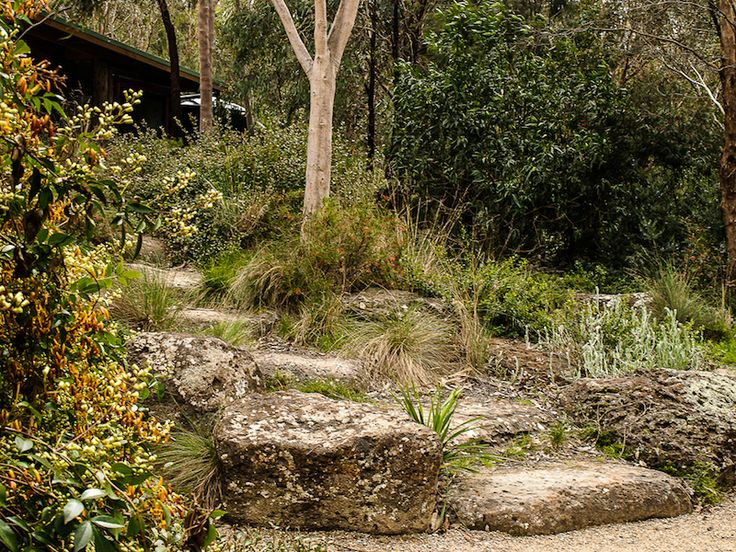 Informal stone steps by Sam Cox who credits his training with Gordon Ford for his successful practice in the naturalistic landscape school (Anne Vale)