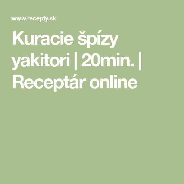 Kuracie špízy yakitori | 20min. | Receptár online