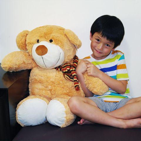 MagicInTheBox.Co.Za - Teddy Bear Brown, R699.00 (http://www.magicinthebox.co.za/teddy-bear-brown/)