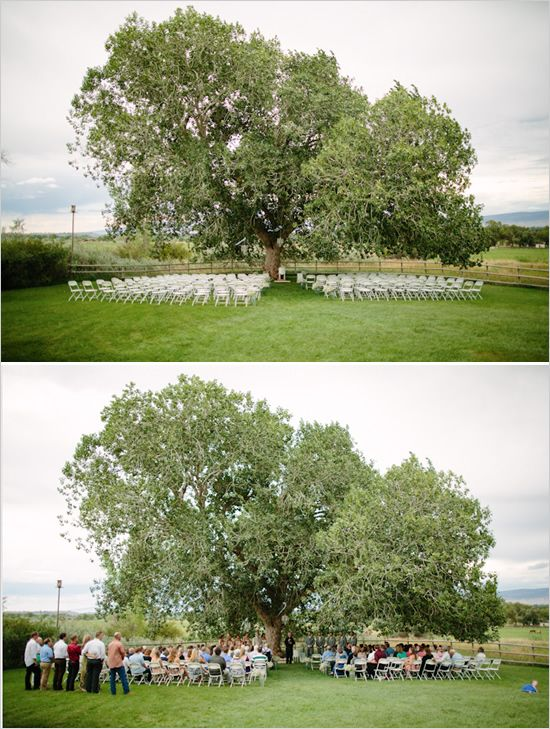 Wedding Ceremony In Backyard : Backyard wedding ceremonies, Backyard weddings and Wedding ceremonies