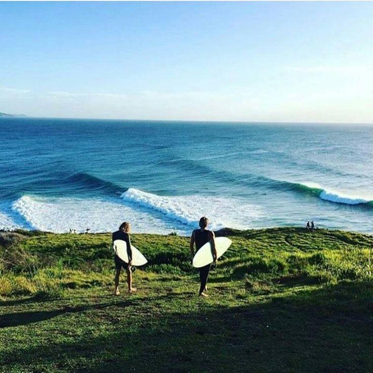 Surfs up | amandakcc