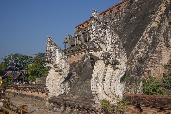 2013 Photograph, Wat Chedi Luang Phra Chedi Luang Five-headed Naga, Tambon Phra Sing, Mueang Chiang Mai District, Chiang Mai Province, Thailand. © 2013.  ภาพถ่าย ๒๕๕๖ วัดเจดีย์หลวง ห้าหัวพญานาคของพระเจดีย์หลวง ตำบลพระสิงห์ เมืองเชียงใหม่ จังหวัดเชียงใหม่ ประเทศไทย