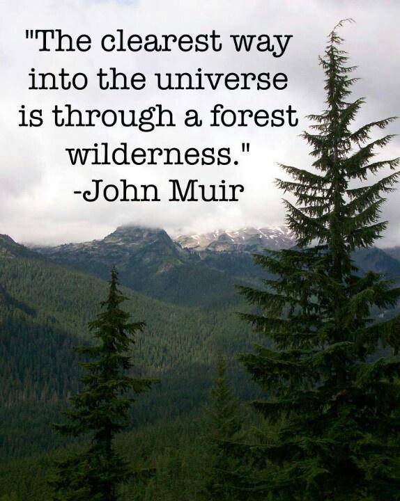 By John Muir