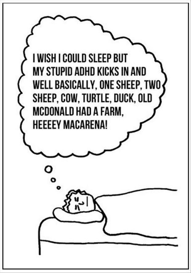 I wish I could sleep, but my stupid ADHD kicks in and, well, basically, one sheep, two sheep, cow, turtle, duck, Old McDonald had a farm, heeeey Macarena!