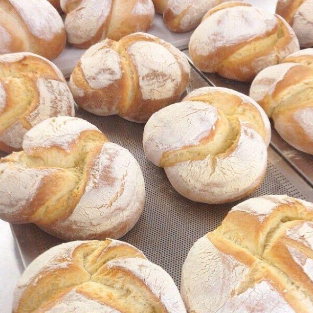 Pane di grano duro. Durum wheat bread. La Divina Commedia