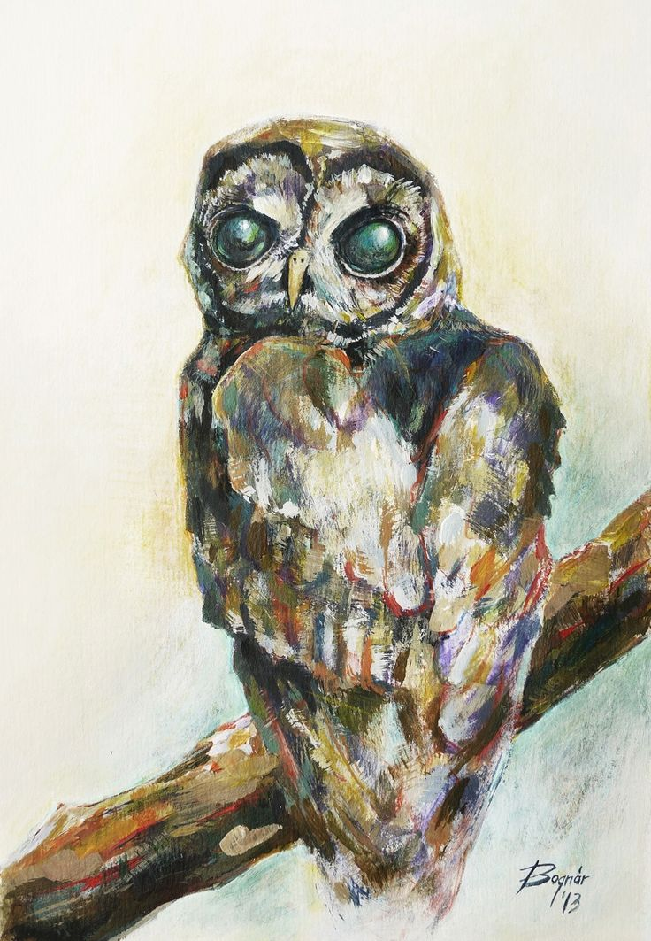 btamas: Owl Acrylic on paper