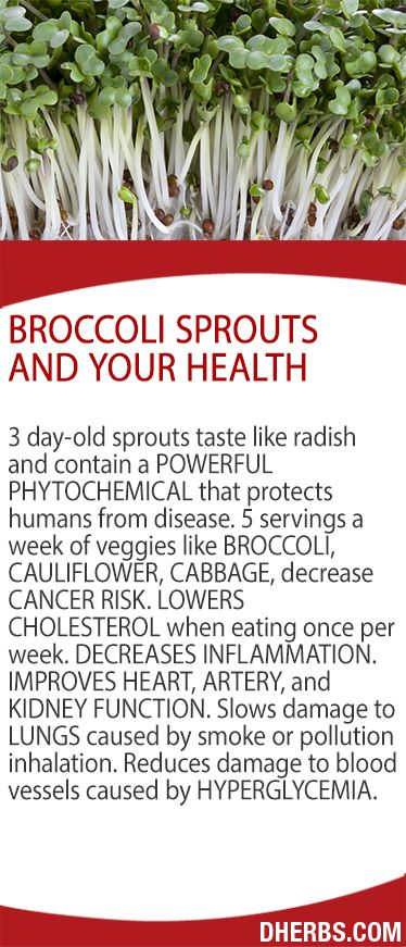 Broccoli Seeds and Your Health