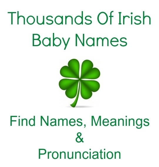derogatory name for irish people meet