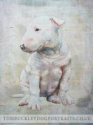Bull Terrier Art - Bull Terrier Puppy  http://tombuckleydogportraits.co.uk/