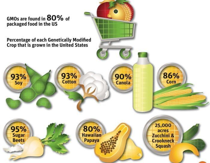 What are GMO's? find out @ www.ahealthylifeforme.com
