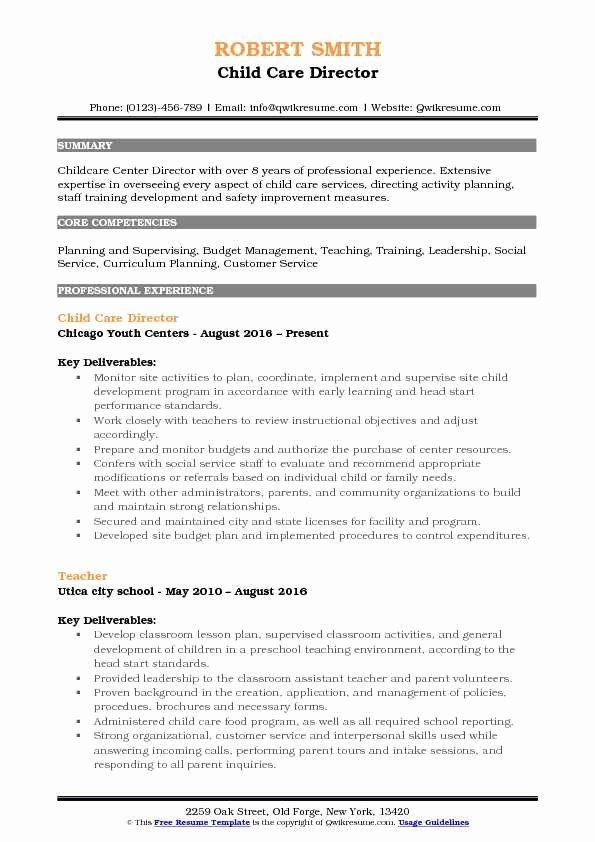 Child Care Director Resume Inspirational Child Care Director Resume Samples In 2020 Job Resume Examples Job Resume Samples Professional Resume Writing Service
