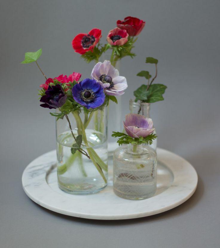 Still life of anemones on marble plate from Stenhuggardottern