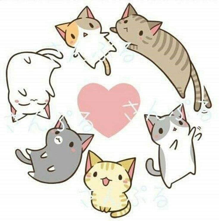 Ghim của Sunshine trên Cute :3 | Cute cat drawing, Cat ...