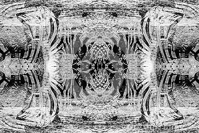 Black & white abstract photo with jungle zebra theme