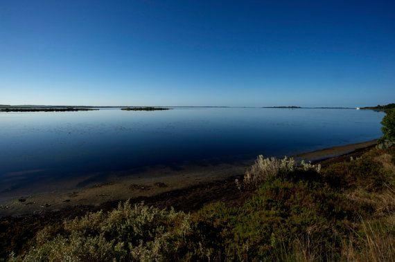 Swan Bay Victoria by GPNaturePhotos on Etsy, $45.00