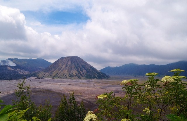 Magnificent Bromo