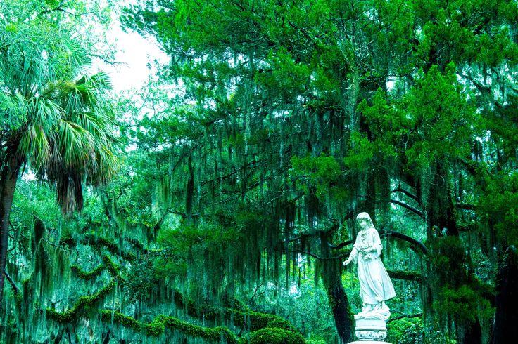 Bonaventure Cemetery evening tour in Savannah Ga.