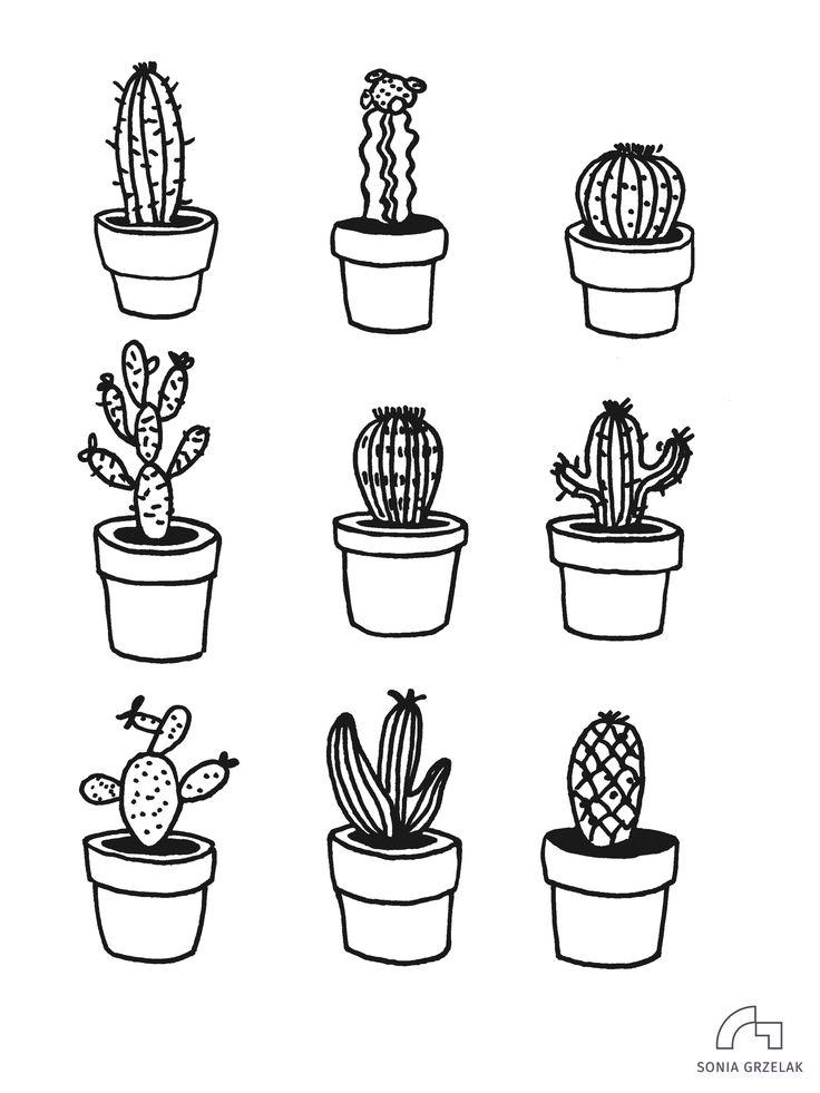 cactus cacti illustration