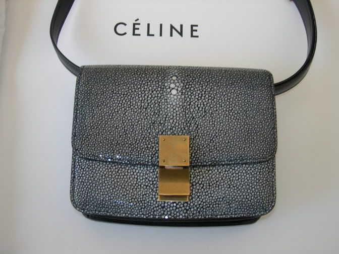 Celine Box Bag In Stingray Leather Carryall Pinterest And Bags