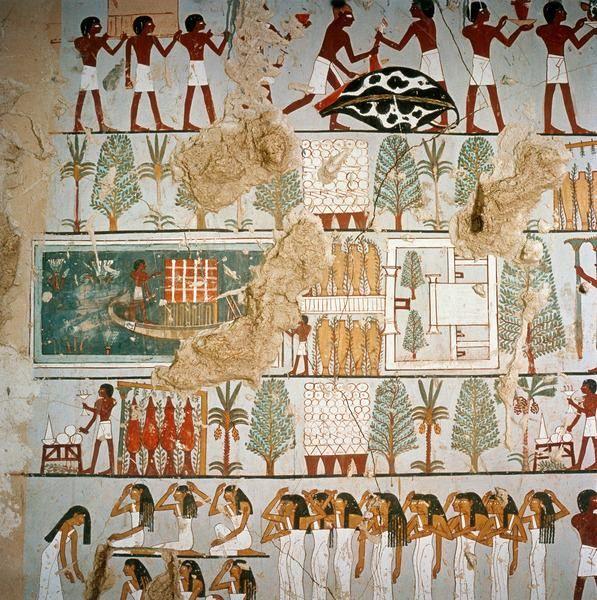 Uma pintura na tumba de minnakhte (T87)    Mostra Uma Villa Tebas rodeada por um jardim plantado com diferentes tipos de árvores, incluindo o sycamore. Minnakhte era superintendente de celeiros do alto e baixo Egito, uma nomeação de prestígio e importância do estado, durante o reinado de Tutmés III. Ele também era supervisor de cavalos do Senhor das duas terras. Novo Reino, 18 ª Dinastia, CA. 1479-1425 A.C. Xeque Abd El Qurna, oeste de Tebas.  Who's Who in Ancient Egypt, Livro de Michael…